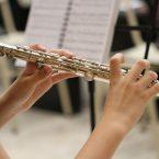 Quels sont les types de flûte les plus populaires dans les écoles de musique ?