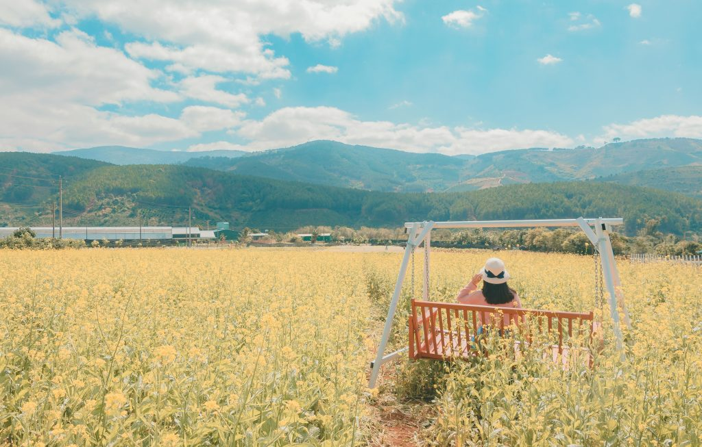 femme assise sur une balancelle dans un champs