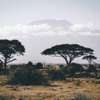 Prénom de Garçon Swahilie - Liste des 38 Meilleurs Prénom de Garçon Swahili