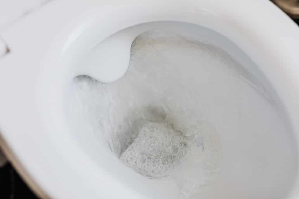Cuvette des toilettes chasse d'eau