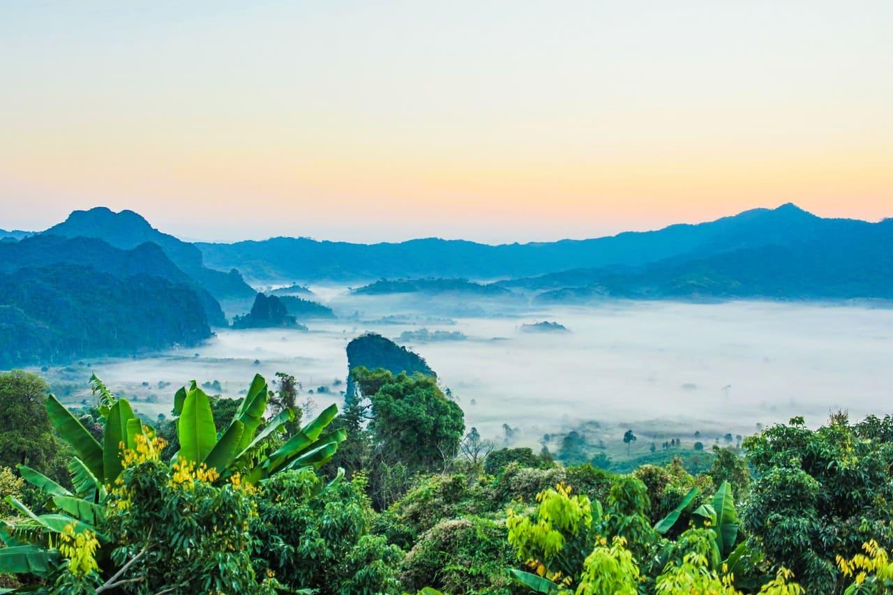 Paysage exotique, asiatique montagne humide