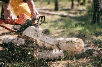 Homme coupant un tronc d'arbre avec une tronçonneuse