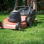 Comment faire le Meilleure choix de Tondeuse pour un Jardin taillé à la Perfection ?