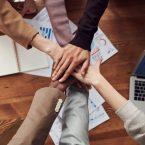 Zimbra est-il le Bon Logiciel Social de Collaboration pour Votre Entreprise ?