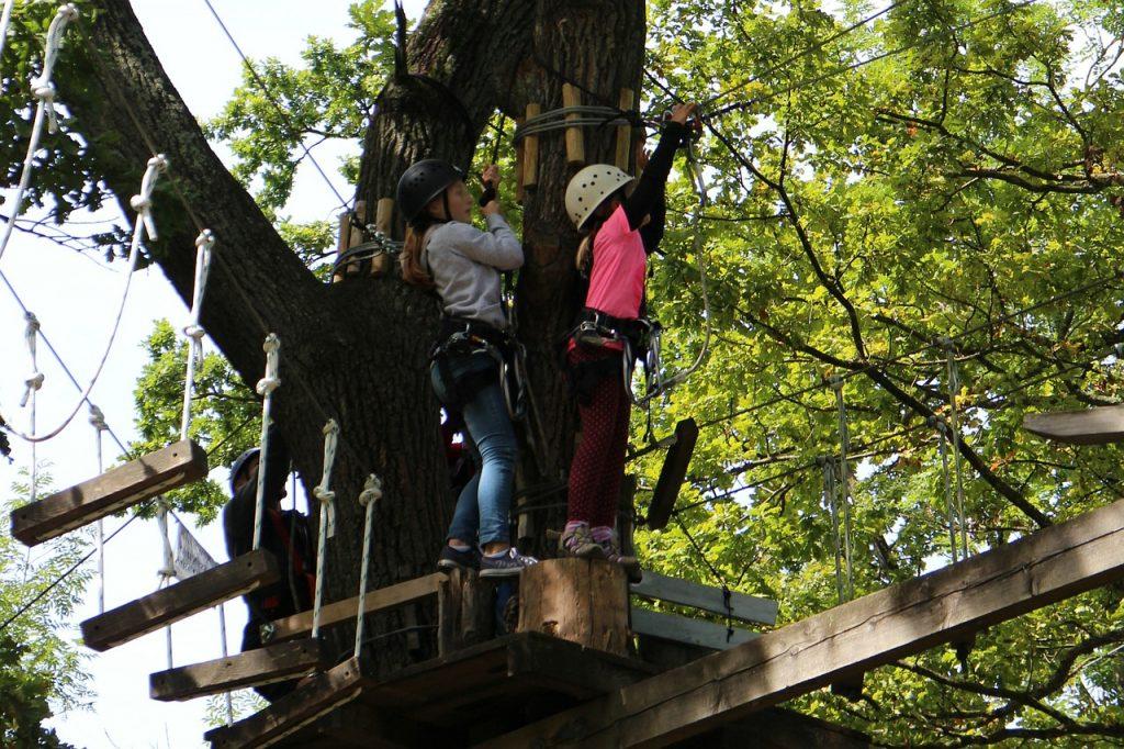 Petites filles faisant de l'accrobranche dans les arbres