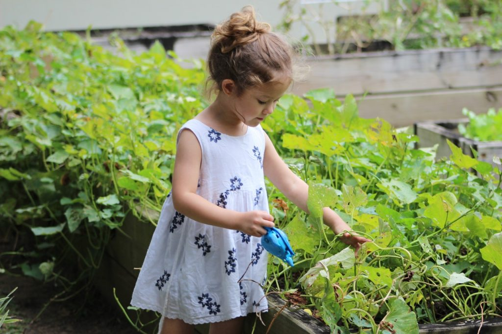 Petite fille s'occupant du jardin, plantations, arrosant