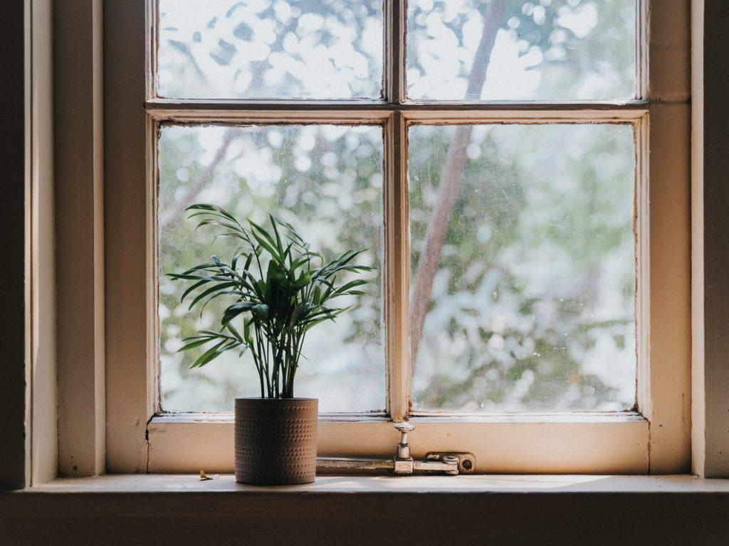 Fenêtre avec petite plante dans un pot posé devant