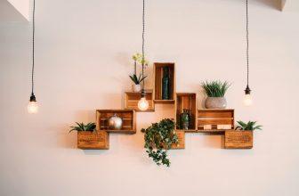 Étagères en forme de cagette, avec des plantes vertes et des vases, lampe pendue avec grosse ampoule